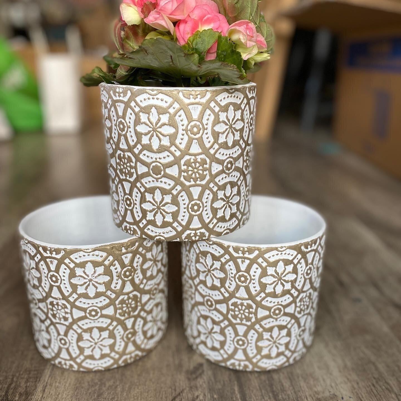 Gold Detail Flower Pot (Qty 1)