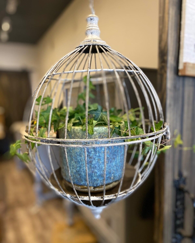 Hanging Plant Birdcage
