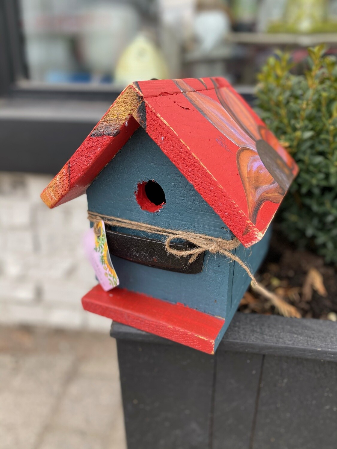 Small Blue and Red Birdhouse with orangeflower on top