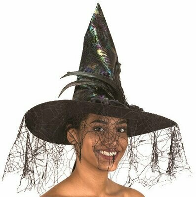Irridescent witch hat with veil