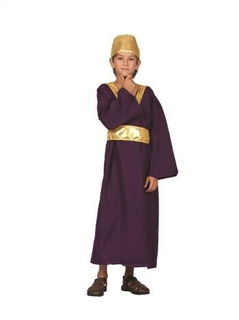Wiseman Child Costume (Purple)