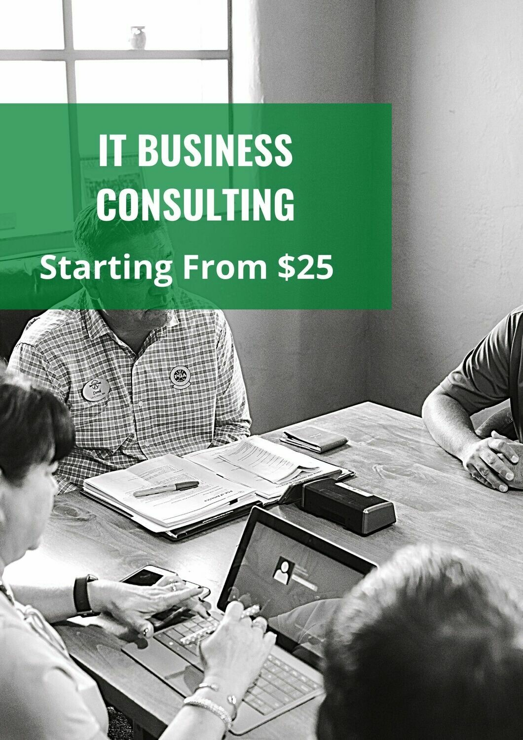 IT Business Consulting Services