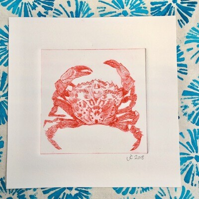 Shore Crab Drypoint Etching