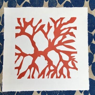 Carragheen Lino Print