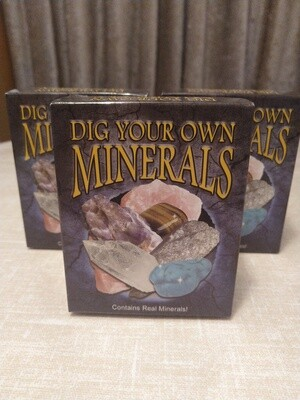 DIG YOUR OWN MINERALS KIT