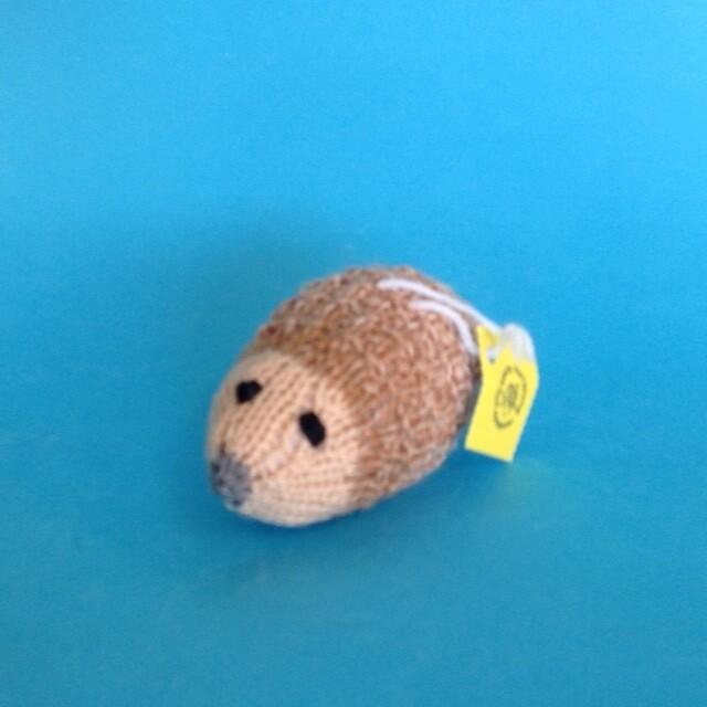Hedgehog - small