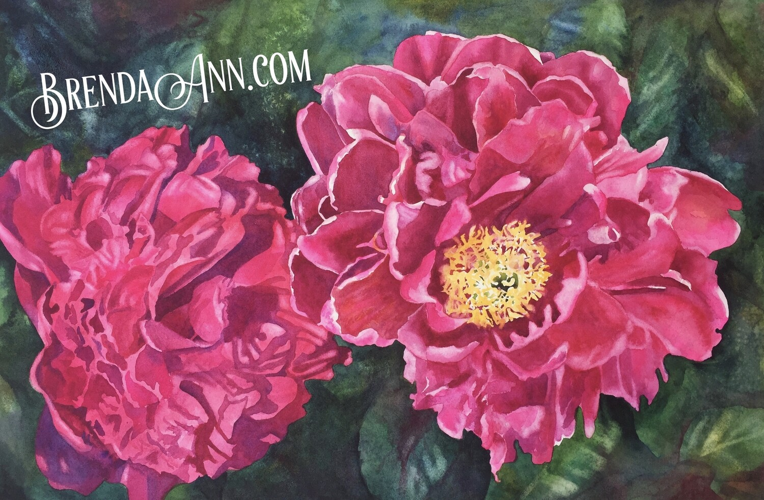 Pink Peony Watercolor - Hand Signed Archival Watercolor Print