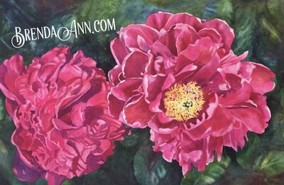 Pink Peony Flower Watercolor - Hand Signed Floral Archival Watercolor Print