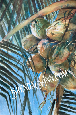 Bunch of Coconuts - Hand Signed Archival Watercolor Print