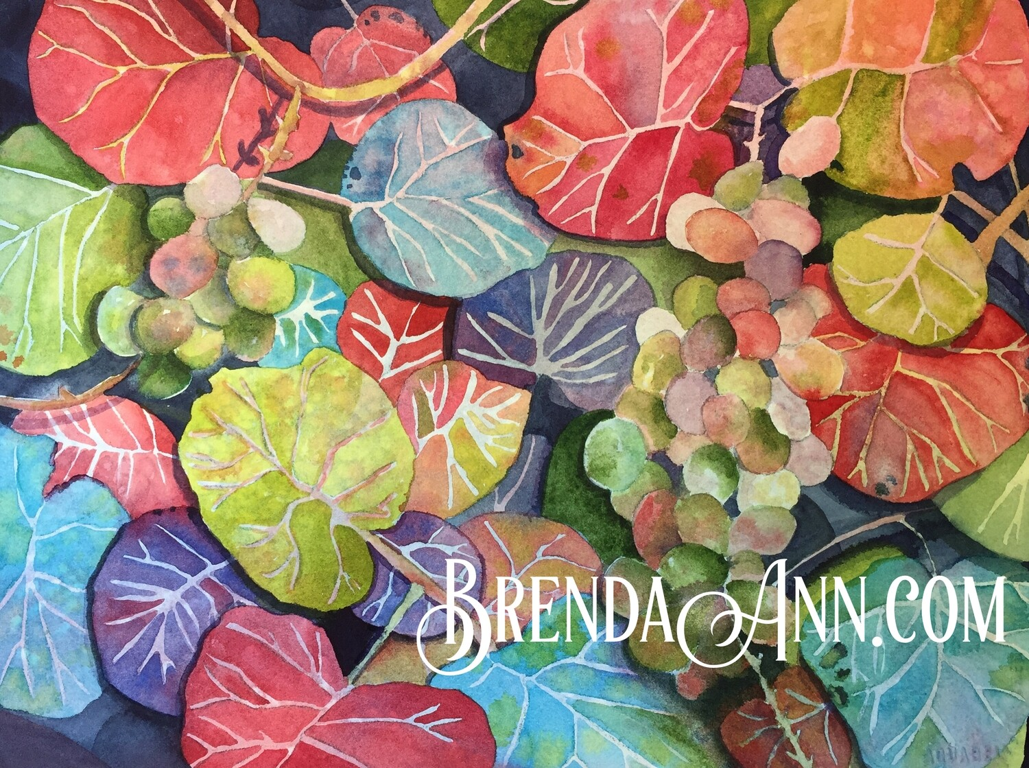 Red Sea Grape Leaves in Key West, FL - Hand Signed Archival Watercolor Print