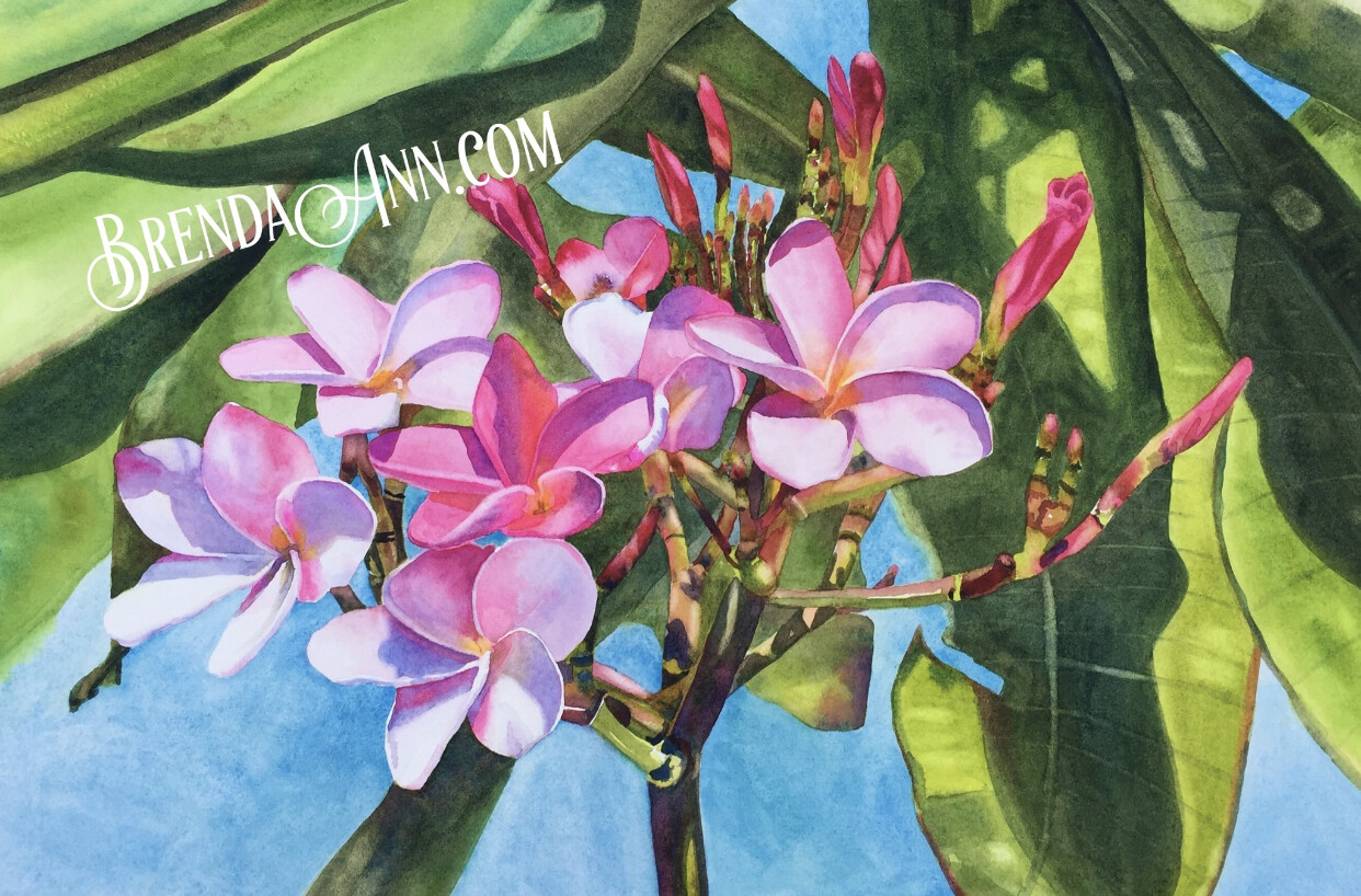 "Florida Keys Puzzle - 500 Piece Pink Plumeria Puzzle 18""x24"""