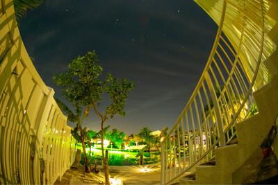 Green Bayou - Photography