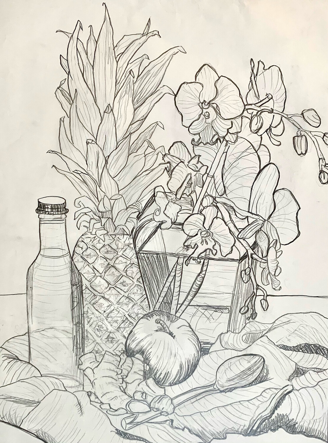Pineapple Still Life - Contour Drawing - Graphite