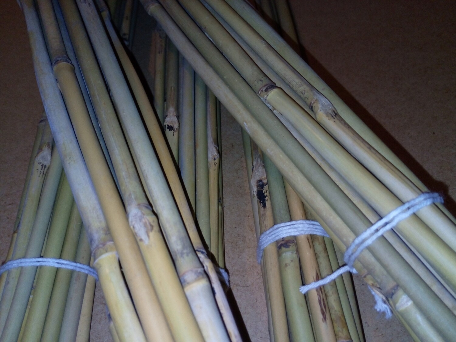 Bamboo Canes 2ft  x20