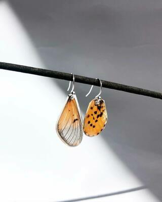 Missmatching Butterfly Wing Earrings