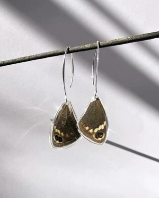 Brown Butterfly Wing Earrings