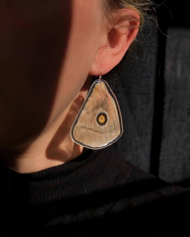 Owl Moth Wing Earrings