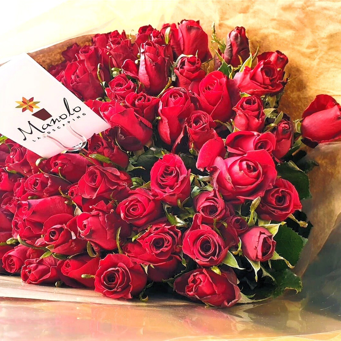 Red Roses from