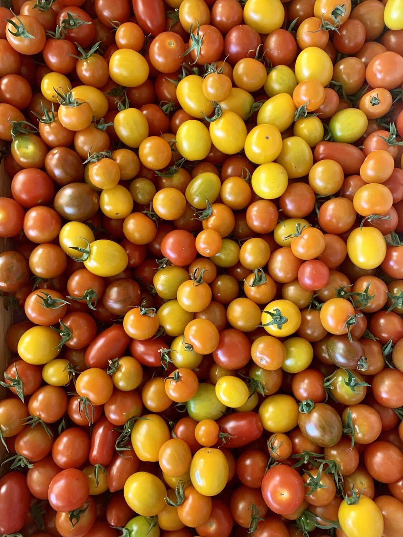 Tomate cerise colorée (le kg)