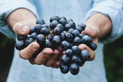 Raisin noir (le kg)