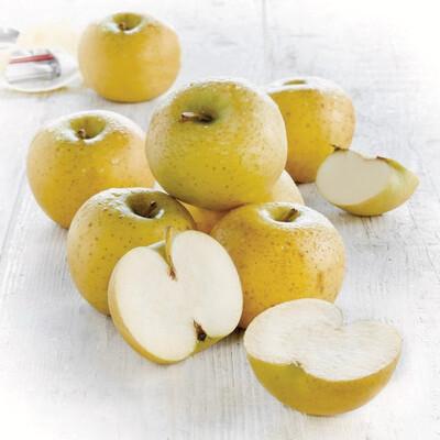 Caisse pomme Chanteclerc (13kg)