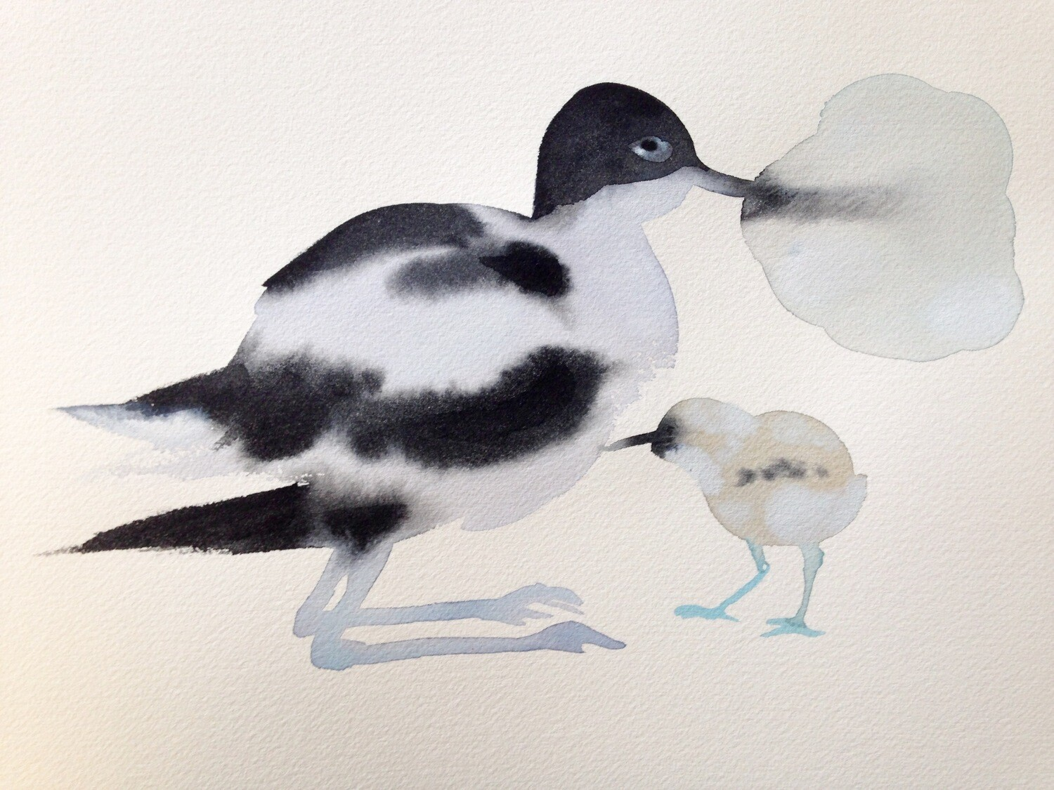 avocet with child