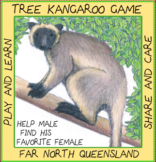 Tree Kangaroo Game