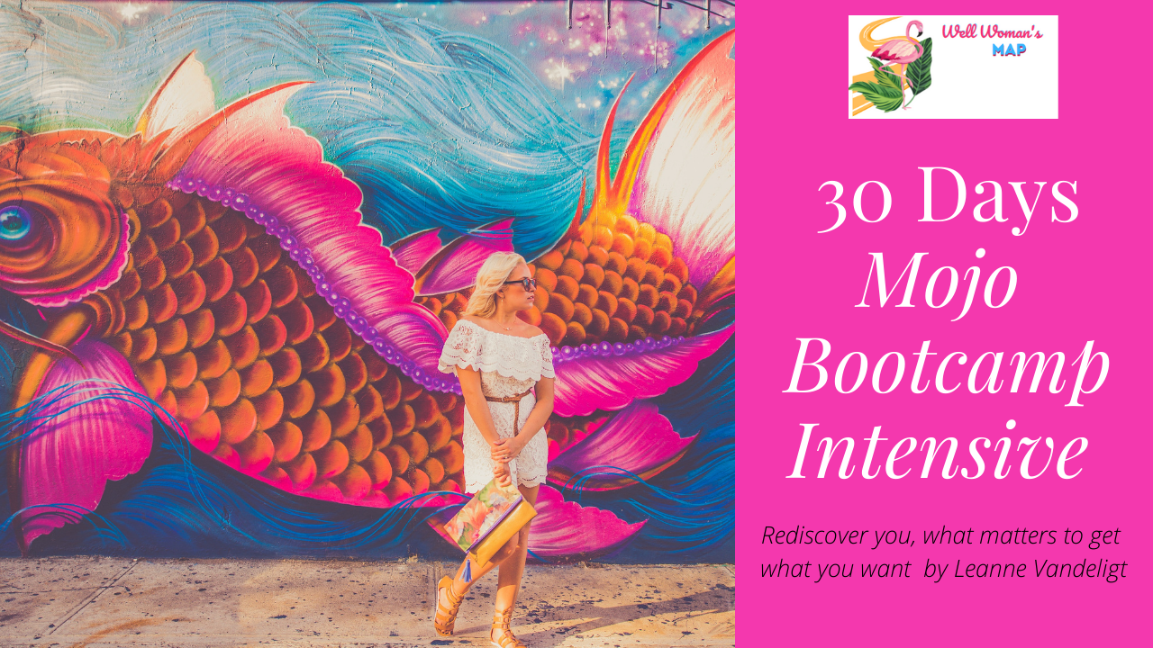 Mojo Bootcamp 30 Day Group Coaching Intensive