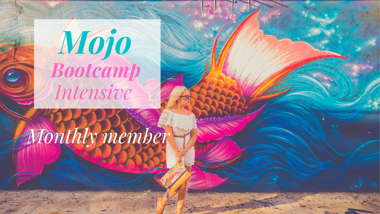 Mojo Bootcamp Intensive Monthly Coaching
