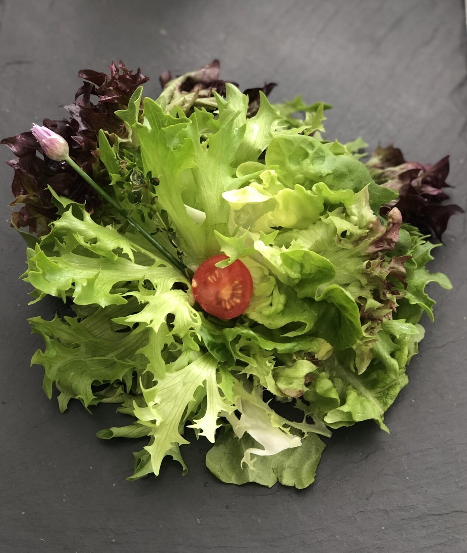 Grüner Blattsalat ab 100g