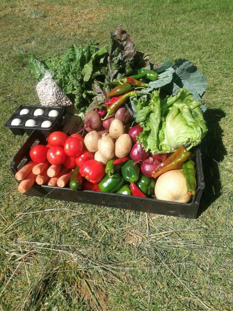 Ubuntu Big Fresh Produce Box