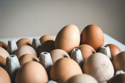 Extra Egg tray of 30 eggs