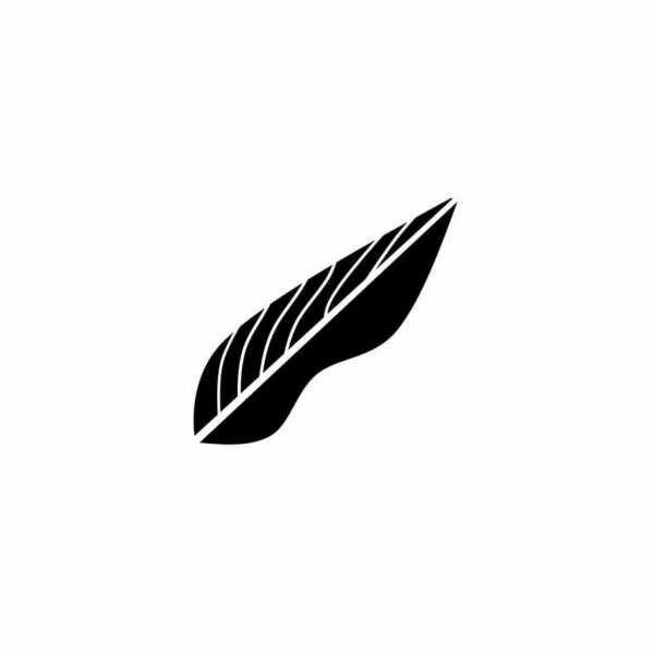 Broken Feathers