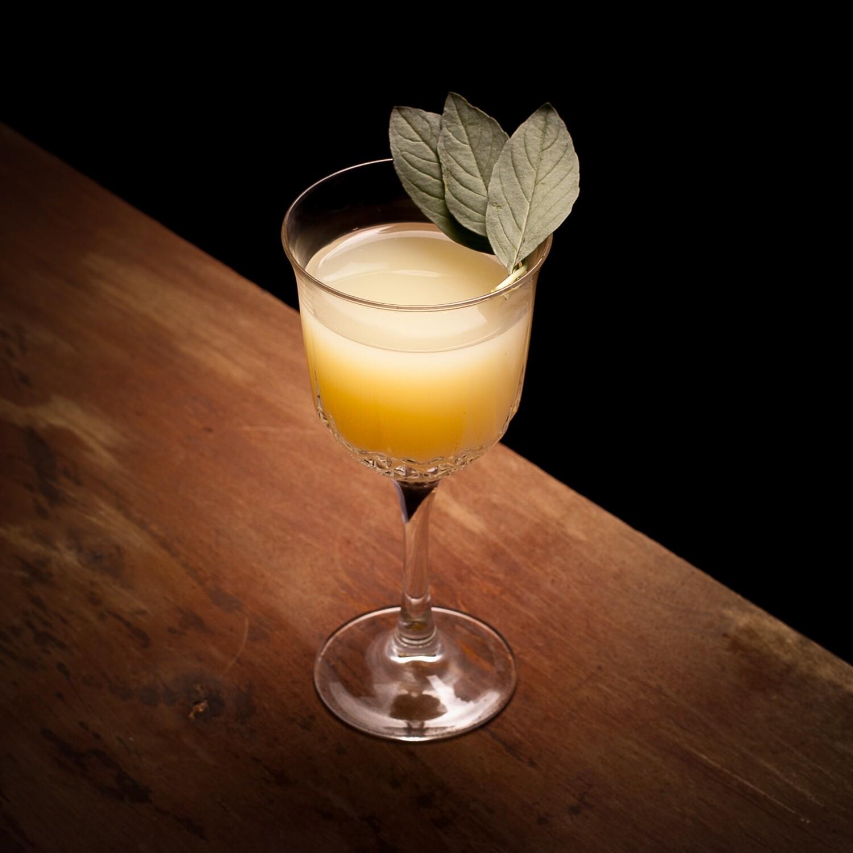 Chasey Lain (Pornstar Martini)
