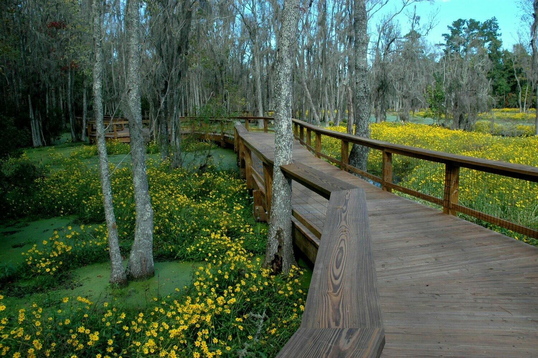 Garden & Swamp Dual Ticket