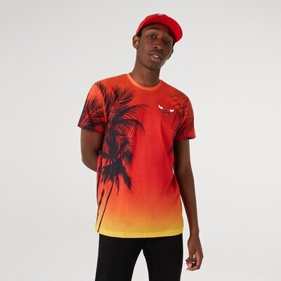 T-shirt Summer City Bulls - New Era