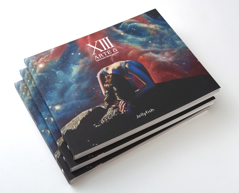 XIII Arte y Transformación Libro visual