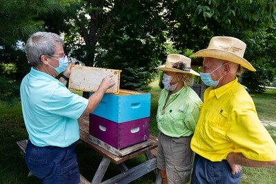 Picnic with the Beekeepers
