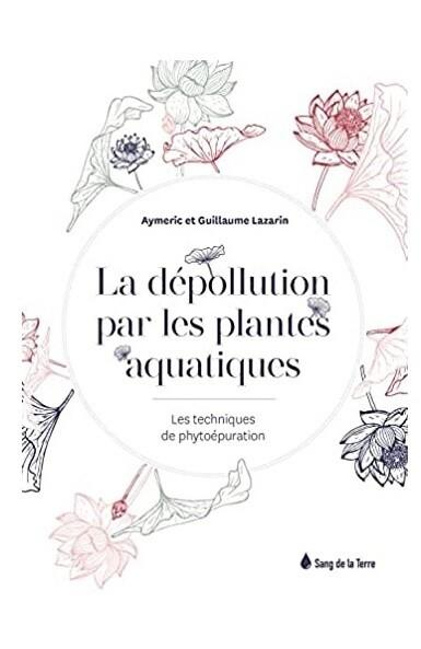 La dépollution par les plantes aquatiques