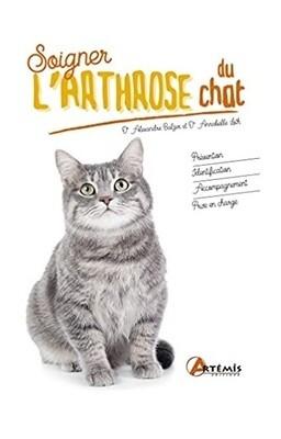 Soigner l'arthrose du chat