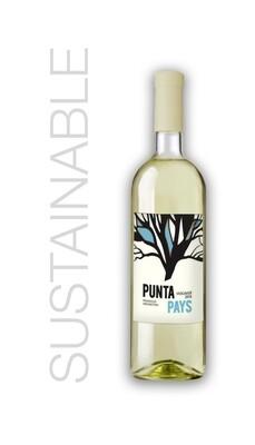Punta Pays Mendoza Viognier 2019