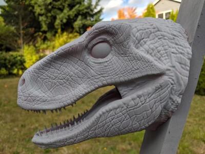 Cabeza Velociraptor Pared