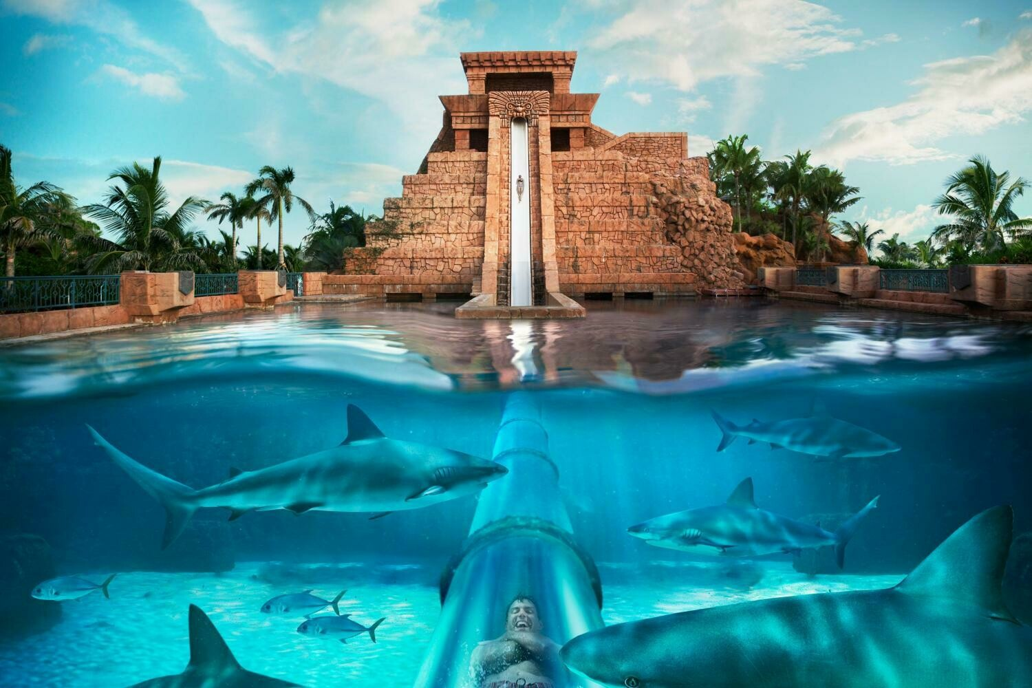 AQUAVENTURE & LOST CHAMBERS, ALTANTIS THE PALM 289 AED