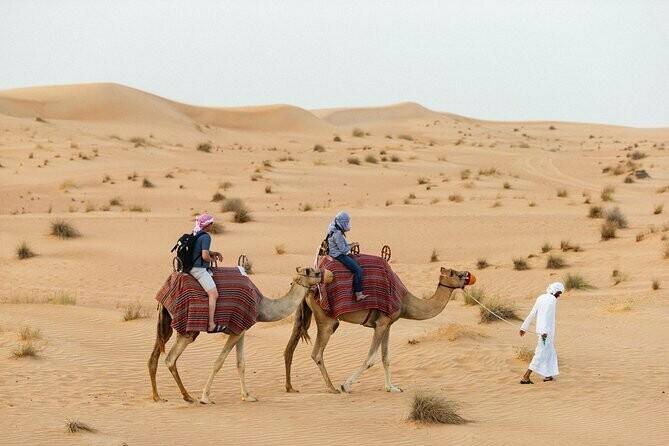 CAMEL DESERT SAFARI + DINER 595 AED