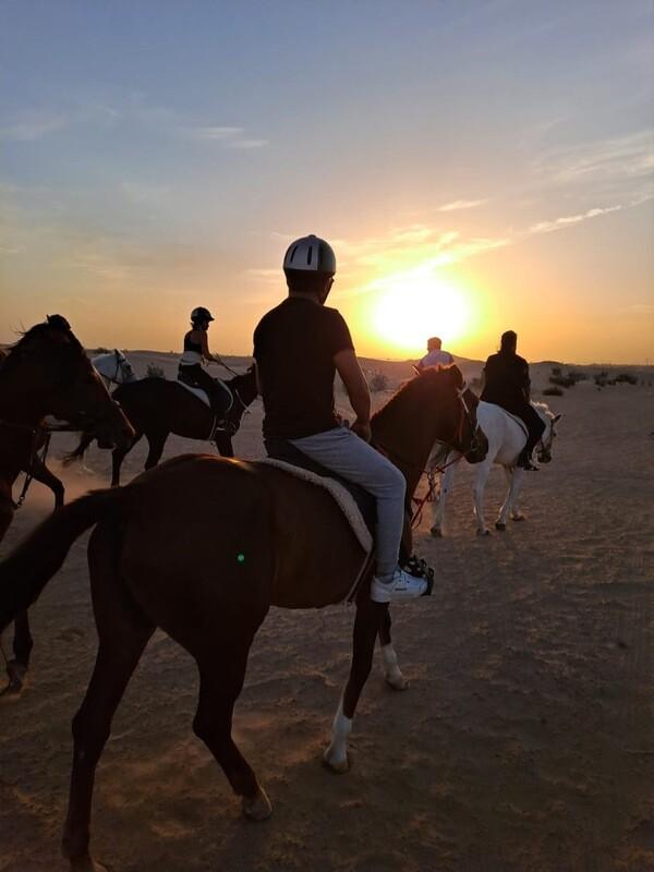 DESERT HORSE RIDING 200 AED