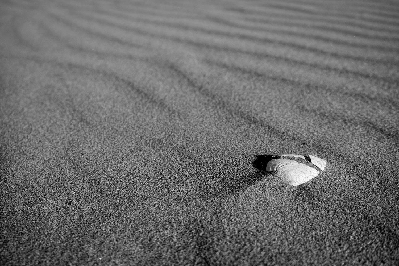 Understanding Black & White Photography