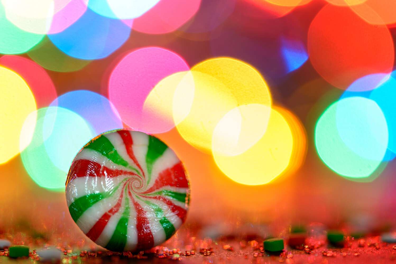 Hunt's Virtual Holiday Macro Photography Workshop
