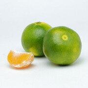 Mandarina Oneco X 1 Libra