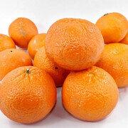 Naranja Tangelo X 1 Libra