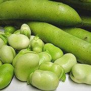 Haba verde Desgranada X 1 Libras